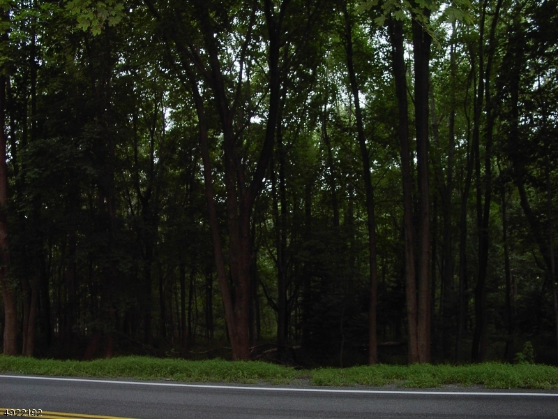 土地 為 出售 在 Califon, 新澤西州 07830 美國