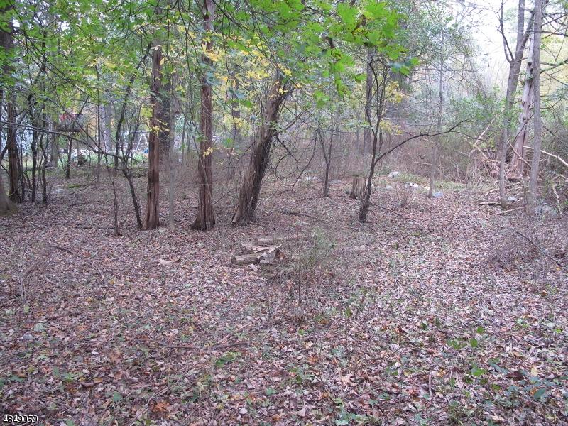 Terreno per Vendita alle ore 20 OLD MASHIPACONG Road Montague, New Jersey 07827 Stati Uniti