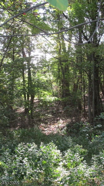 Additional photo for property listing at Burlington Path Road  Cream Ridge, Nueva Jersey 08514 Estados Unidos