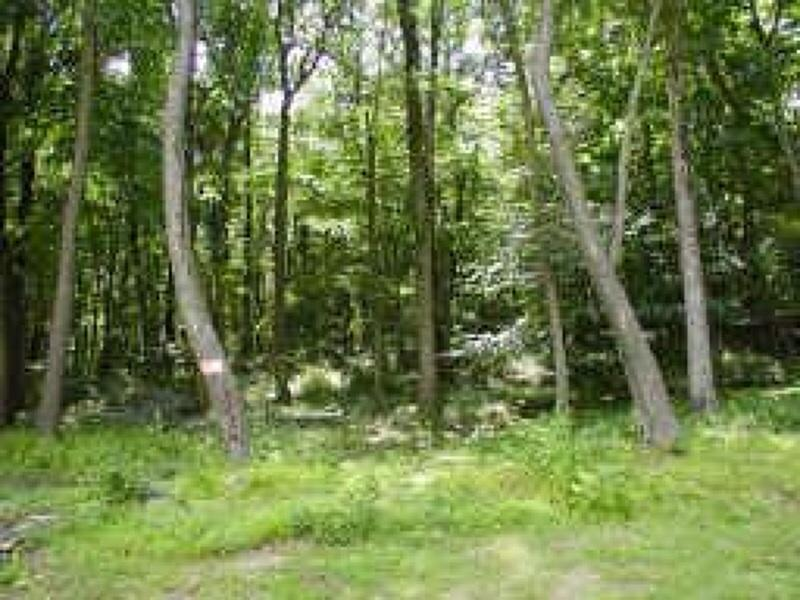 Additional photo for property listing at 8 Pine Ridge Road  Califon, Нью-Джерси 07830 Соединенные Штаты