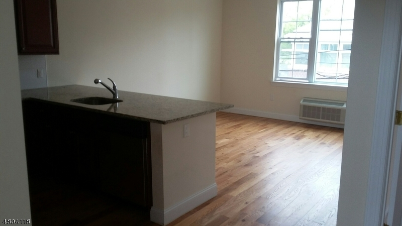 Condominio/ Casa de pueblo por un Alquiler en 1609 SPRINGFIELD Avenue Maplewood, Nueva Jersey 07040 Estados Unidos
