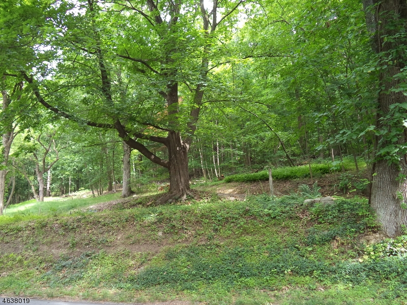 Additional photo for property listing at 60 Staats Road  Bloomsbury, Nueva Jersey 08804 Estados Unidos