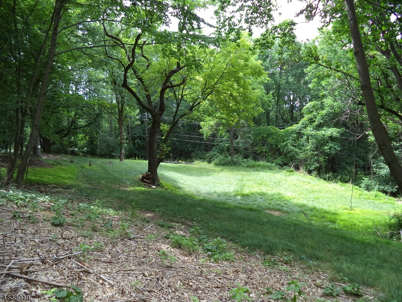 Additional photo for property listing at 60 Staats Road  Bloomsbury, New Jersey 08804 États-Unis
