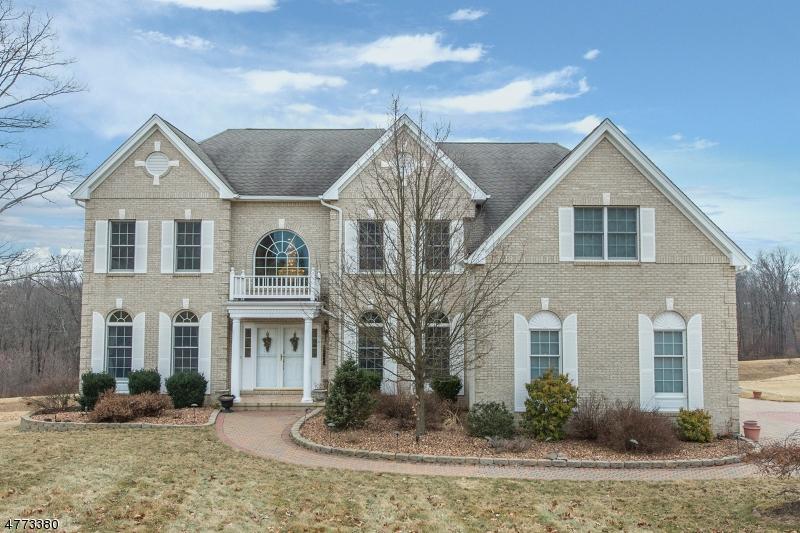 Nhà ở một gia đình vì Bán tại 17 Sovereign Drive Mount Olive, New Jersey 07836 Hoa Kỳ