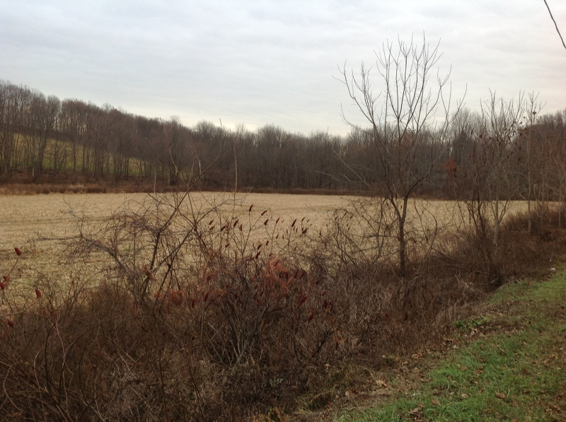 Land for Sale at BROWN Sussex, 07461 United States