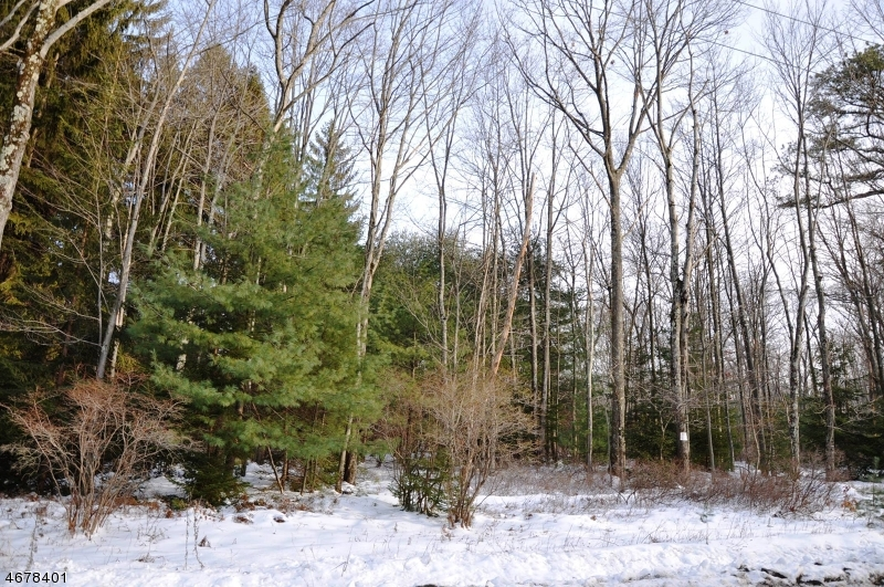 Land for Sale at Route 390 lot 3 Canadensis, Pennsylvania 18325 United States