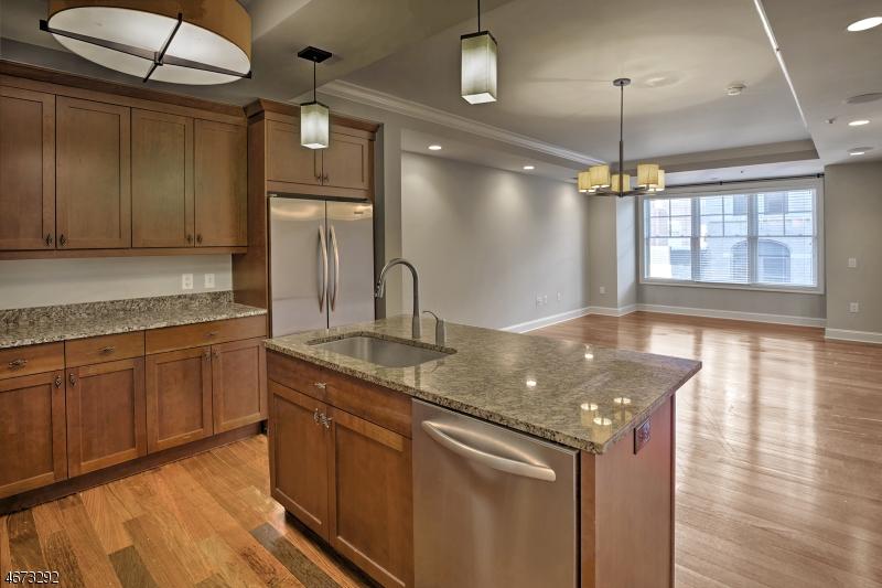 独户住宅 为 出租 在 40 W Park Place 莫里斯敦, 新泽西州 07960 美国