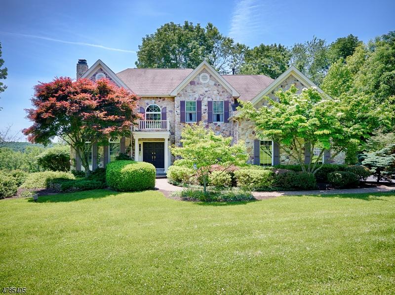 Villa per Vendita alle ore 24 Old Schoolhouse Road Asbury, New Jersey 08802 Stati Uniti