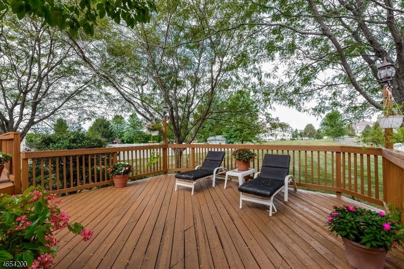 Additional photo for property listing at 521 Marlin Farm Road  Stewartsville, New Jersey 08886 États-Unis