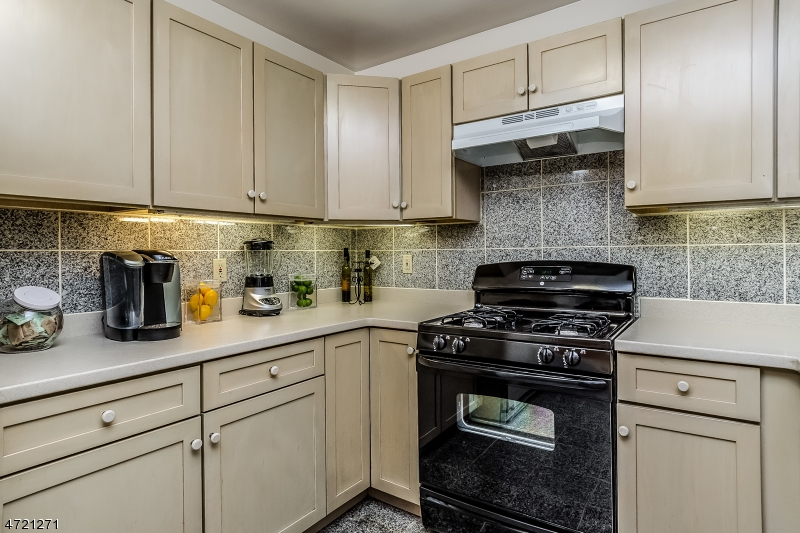 Additional photo for property listing at 31 Mews Lane  South Orange, New Jersey 07079 United States
