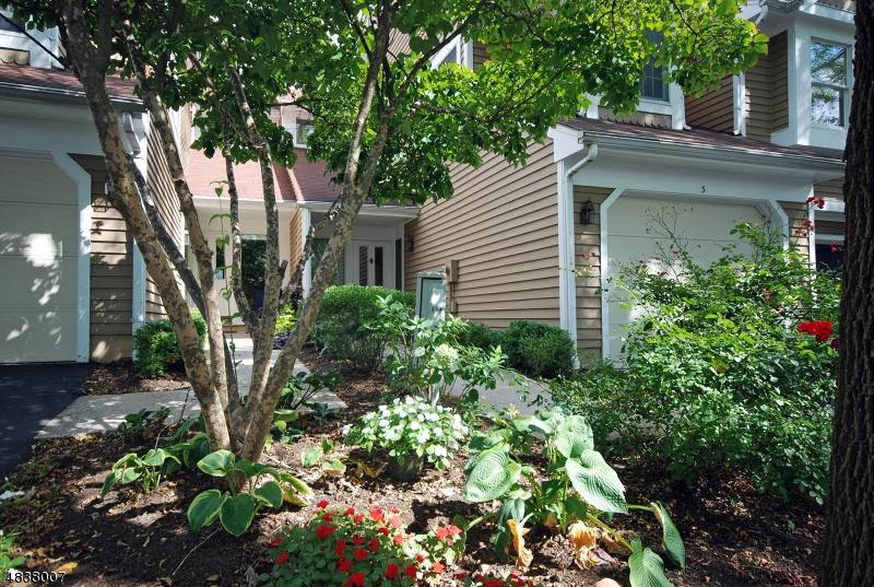 Condo / Townhouse pour l à louer à 3 valley view Bedminster, New Jersey 07921 États-Unis