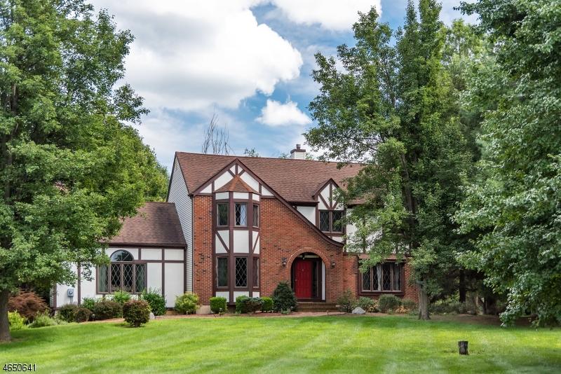 Maison unifamiliale pour l Vente à 2 Elmwood Lane Washington, New Jersey 07882 États-Unis