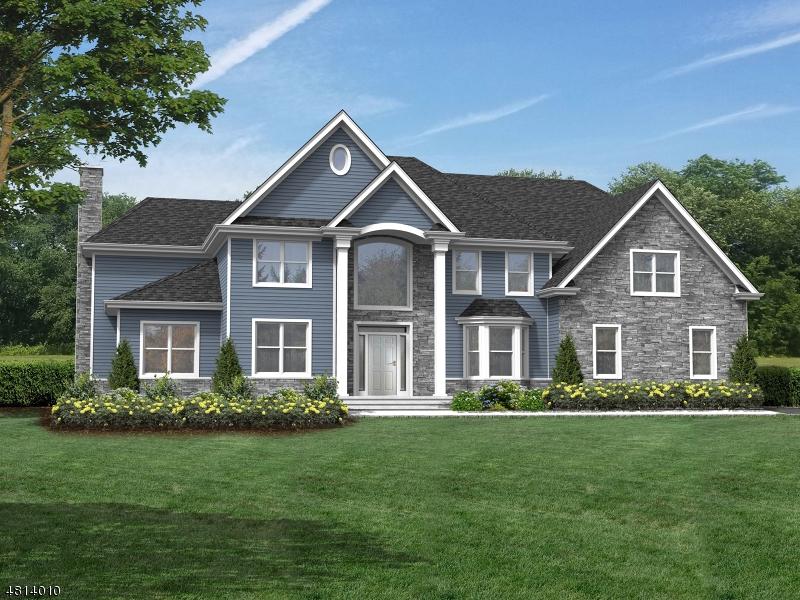 Tek Ailelik Ev için Satış at 69 PAYNE Road Clinton, New Jersey 08833 Amerika Birleşik Devletleri