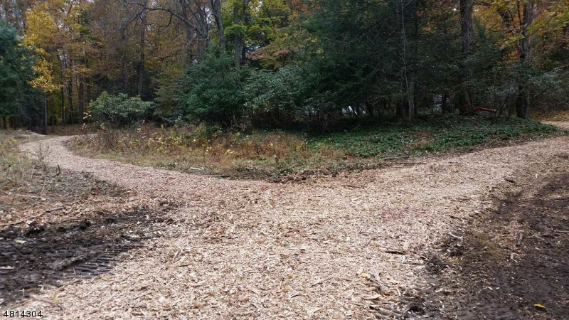 Land / Lots for Sale at 17 WESTERLY RD Saddle River, New Jersey 07458 United States