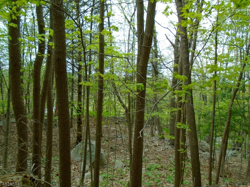 Additional photo for property listing at 200 Lake Wallkill Road  Sussex, New Jersey 07461 United States