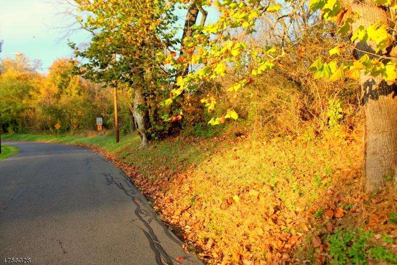 土地,用地 为 销售 在 Lows Hollow Road Greenwich, 新泽西州 08886 美国