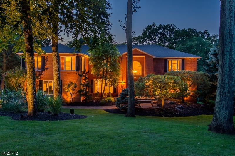 Частный односемейный дом для того Продажа на 8 PINNACLE PT Randolph, Нью-Джерси 07869 Соединенные Штаты