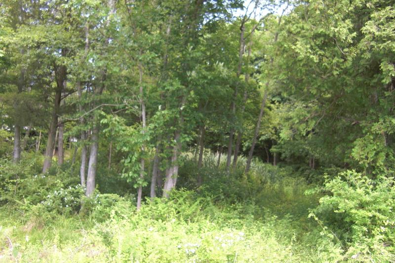 Частный односемейный дом для того Продажа на 380 Powerville Road Boonton, 07005 Соединенные Штаты