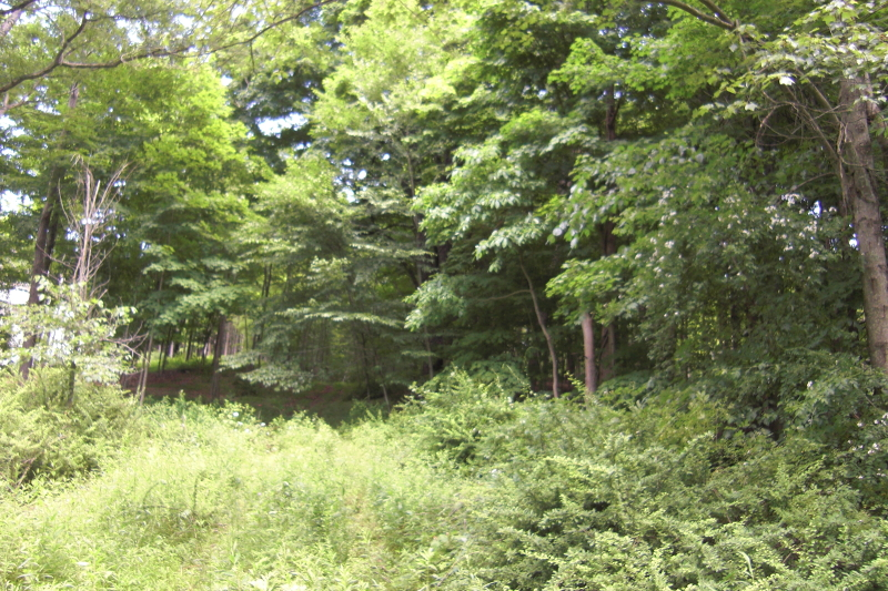 Additional photo for property listing at 380 Powerville Road  Boonton, Нью-Джерси 07005 Соединенные Штаты