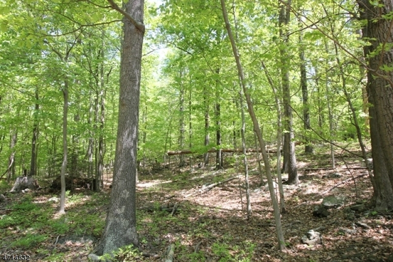 Land / Lots for Sale at 00 TULIP AVE 00 TULIP AVE Ringwood, New Jersey 07456 United States