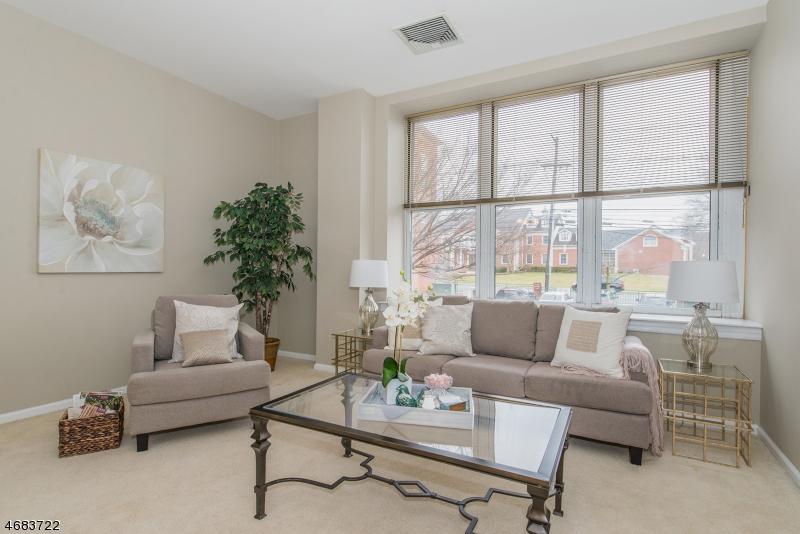 独户住宅 为 出租 在 240 Main St, UNIT 214 小瀑布市, 新泽西州 07424 美国