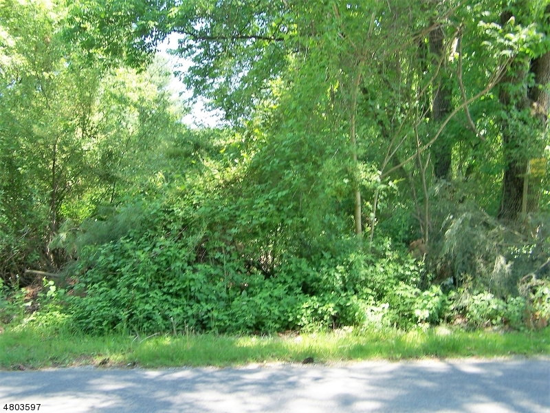 Land for Sale at 314 Wagon Wheel Road Montague, New Jersey 07827 United States