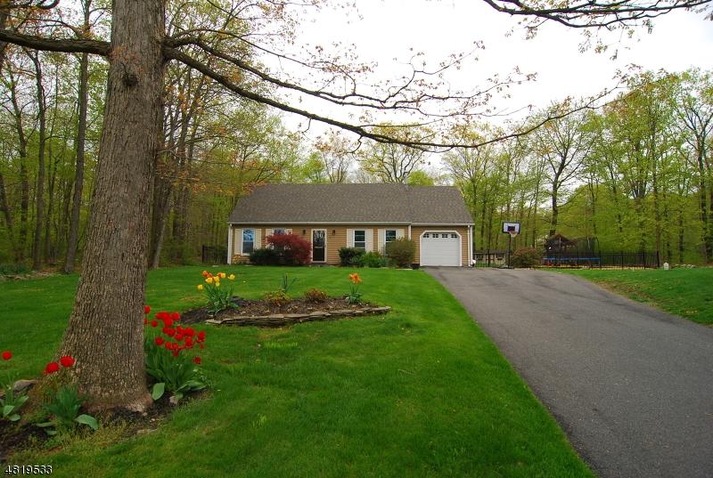 Property per Vendita alle ore 59 POSSAGHI Road Hampton, New Jersey 07860 Stati Uniti