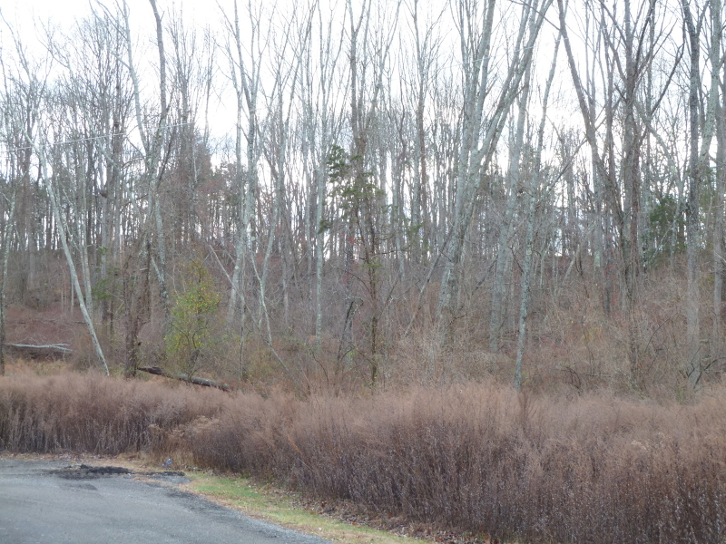 Additional photo for property listing at 429 HOPE BLAIRSTOWN Road  Blairstown, 新泽西州 07825 美国