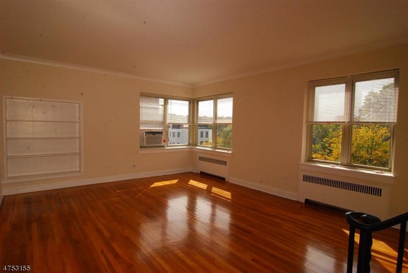 独户住宅 为 出租 在 10 N Ridgewood Road 南奥林奇, 新泽西州 07079 美国