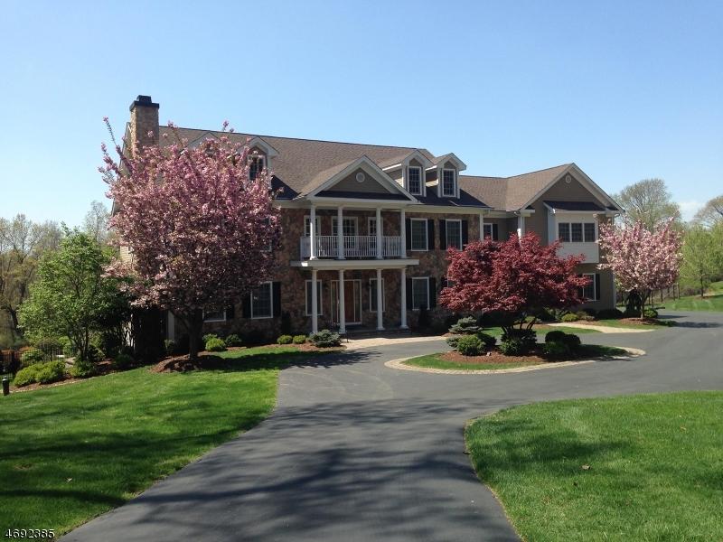 Casa Unifamiliar por un Venta en 16 Walnut Hill Drive Chester, Nueva Jersey 07930 Estados Unidos