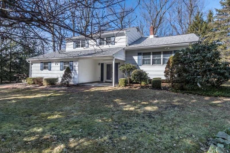 Maison unifamiliale pour l Vente à 10 PAMELA Drive Randolph, New Jersey 07869 États-Unis