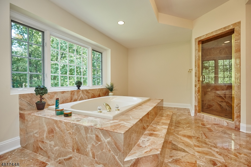 Additional photo for property listing at 61 Butternut Lane  Basking Ridge, Нью-Джерси 07920 Соединенные Штаты
