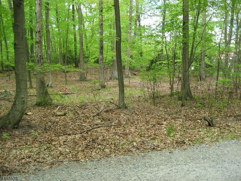 Land for Sale at 31-33 CRYSTAL DR WRIGHT Denville, New Jersey 07834 United States