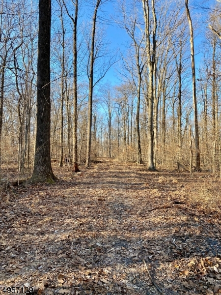 Land for Sale at Address Not Available East Amwell, New Jersey 08525 United States