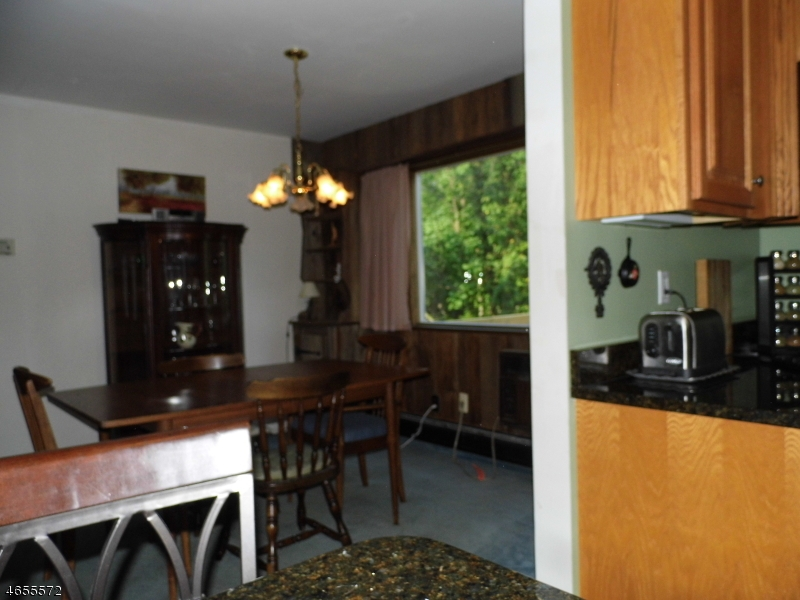 Additional photo for property listing at 46 Navajo Trail  West Milford, Нью-Джерси 07480 Соединенные Штаты