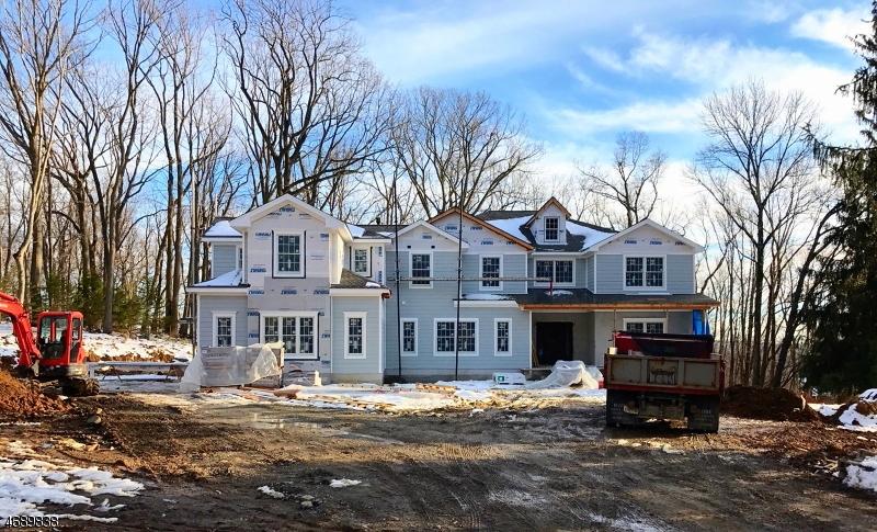 Частный односемейный дом для того Продажа на 3 BUDDY Lane Brookside, 07926 Соединенные Штаты