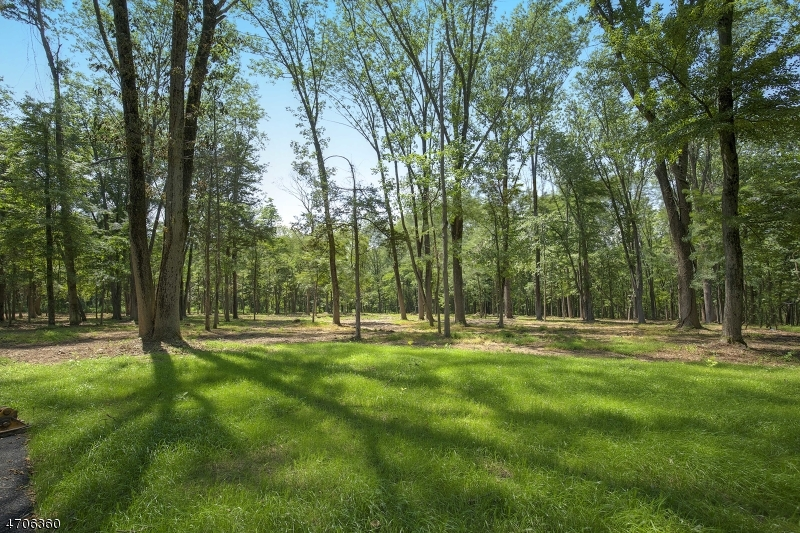 Land for Sale at 29 TWIN OAKS Lane Harding Township, New Jersey 07976 United States