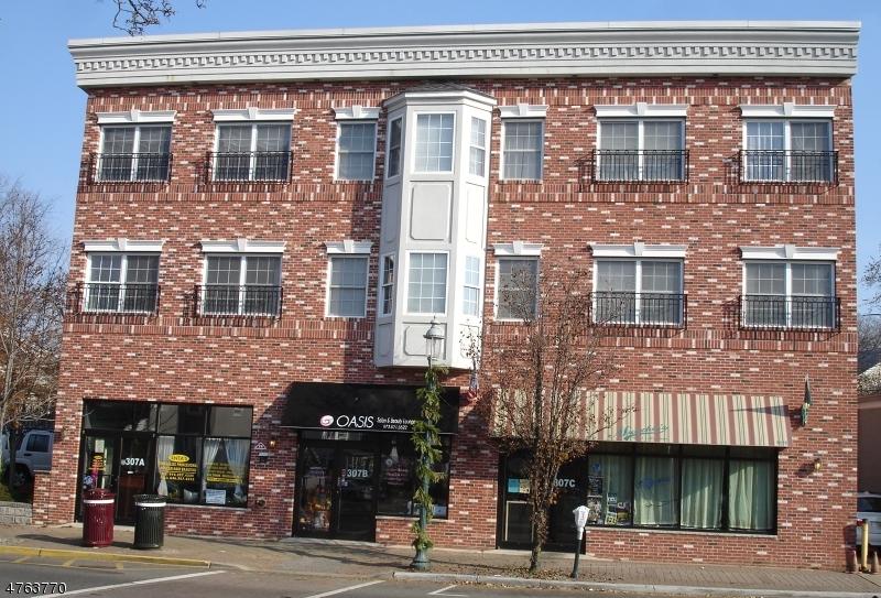 独户住宅 为 出租 在 307 Irvington Avenue 南奥林奇, 新泽西州 07079 美国