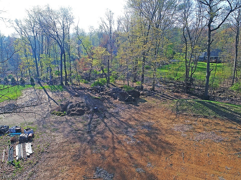 Additional photo for property listing at 5 Shepherds Lane  Roxbury Township, New Jersey 07876 United States