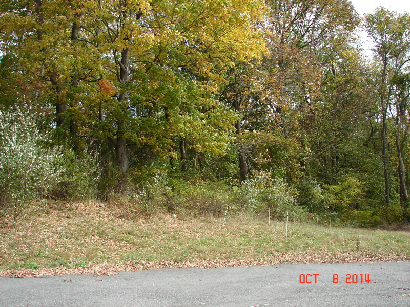 Additional photo for property listing at 173 State Park Road  Blairstown, 新泽西州 07825 美国