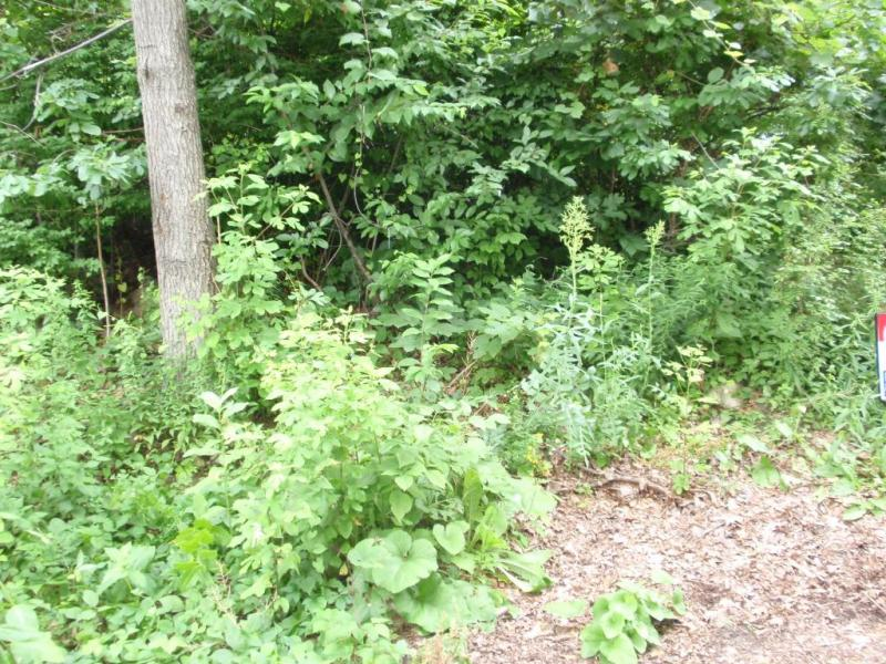 Land for Sale at 15 Florence Street Stanhope, New Jersey 07874 United States