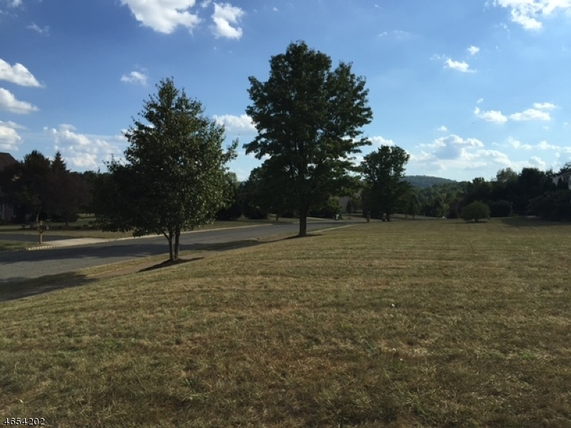Additional photo for property listing at 107 Stone Crossing  Stewartsville, New Jersey 08886 United States