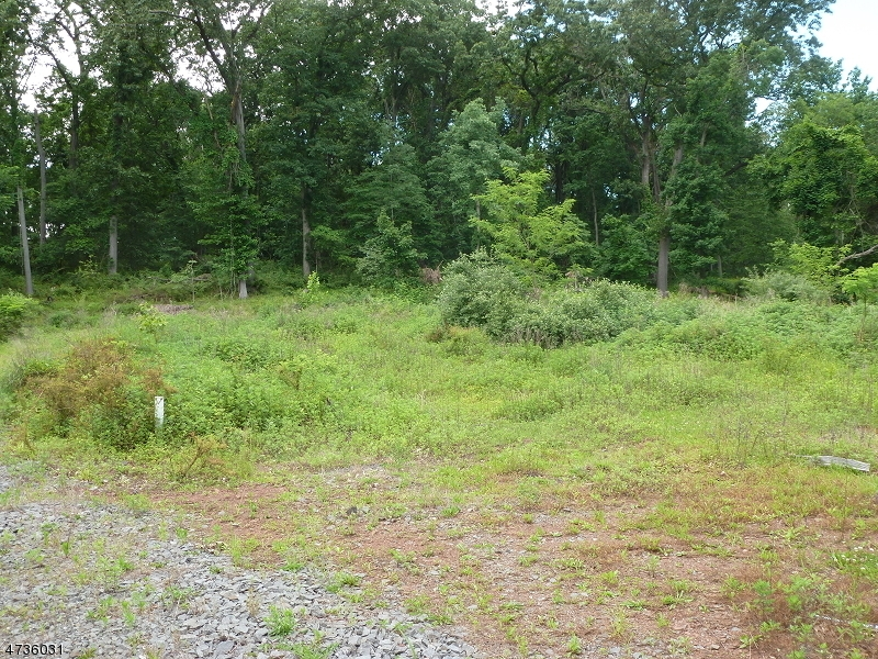 Land for Sale at 164 SPRING HILL Road Montgomery, New Jersey 08558 United States