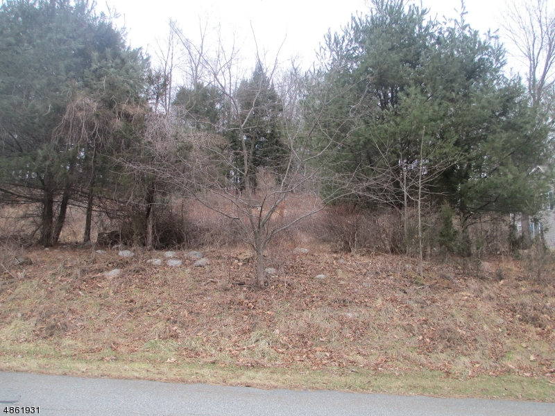 Land for Sale at 15 COLE HAVEN TER Montague, New Jersey 07827 United States