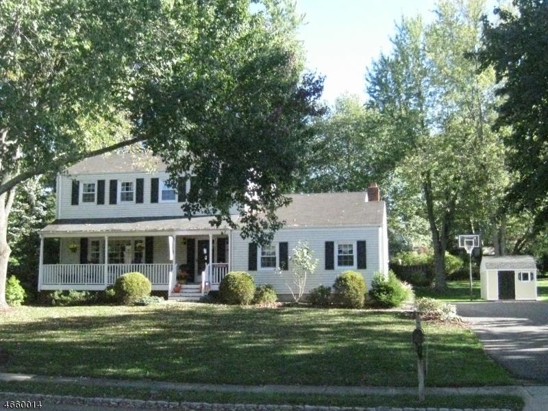 Частный односемейный дом для того Продажа на 9 Florie Farm Road Mendham, Нью-Джерси 07945 Соединенные Штаты