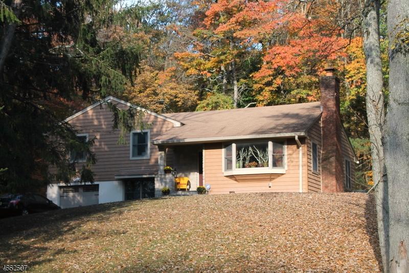 Частный односемейный дом для того Продажа на 45 LILAC Drive Flemington, Нью-Джерси 08822 Соединенные Штаты