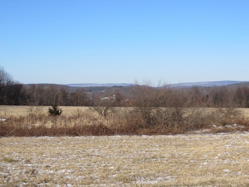 土地,用地 为 销售 在 39 Beaver Run Rd, OLD 拉斐特, 新泽西州 07848 美国