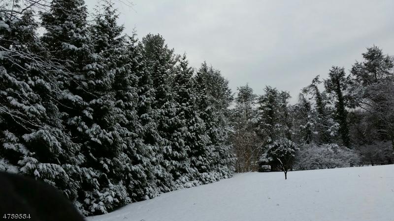 Terrain pour l Vente à Elmsley Court Ridgewood, New Jersey 07450 États-Unis