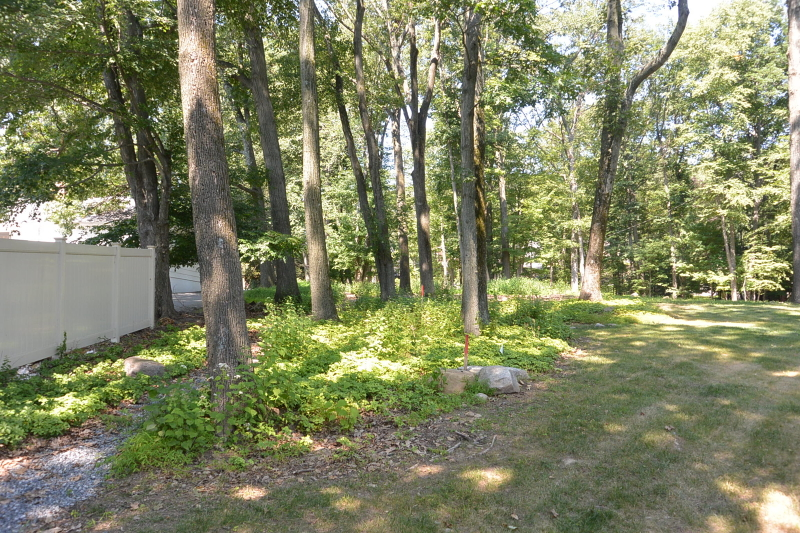 Additional photo for property listing at 83 W Lake Shore Drive  Rockaway, 新泽西州 07866 美国