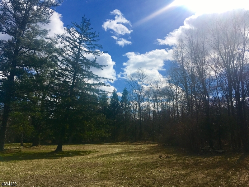 Land for Sale at 94 MARSH COR WOODSVL Road Hopewell, New Jersey 08525 United States
